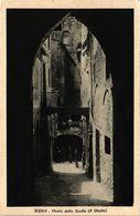 PC JUDAICA Sien - Vicolo Delle Scotte (Il Ghetto) (a1202) - Jodendom