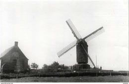 GELUWE - Wervik (W.Vl.) - Molen/moulin - Maxikaart Van De Arkemolen, Vernield In 1918. Links: Een Hondenmolen. - Wervik