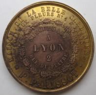 Medaille Maison De La Belle Jardinière Succursale A Lyon 2 Rue Du Plâtre. P. Parissot. Napoléon III Et Eugénie - Otros
