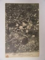 Guerre 14-18 - Verdun - Une Tranchée Au Ravin De La Mort - Carte Non-circulée - Guerre 1914-18
