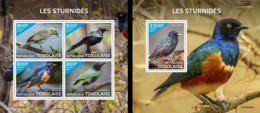 Togo 2019, Animals, Starling, 4val In BF +BF - Togo (1960-...)