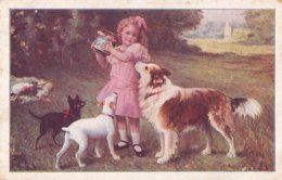 Chiens Lot De 3 CPA - Dogs