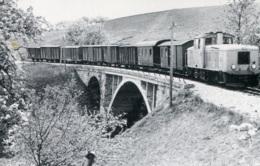 StLB Feistritztalbahn Mit VL 14 Bei Peesen, Ungelaufen - Trains