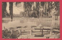 Boitsfort - Le Parc ( Voir Verso ) - Watermael-Boitsfort - Watermaal-Bosvoorde