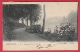 Boitsfort - Vue Matinale Sur Le Lac -1905 ( Voir Verso ) - Watermael-Boitsfort - Watermaal-Bosvoorde