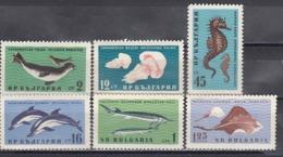 Bulgaria 1961 - Animals In The Black Sea, Mi-Nr. 1243/48, MNH** - Bulgaria