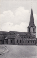Borgloon, Collegiale Kerk St Odulphus (pk64716) - Borgloon