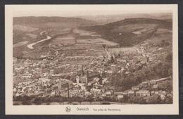 111344/ DIEKIRCH, Vue Prise Du Herrenberg - Diekirch