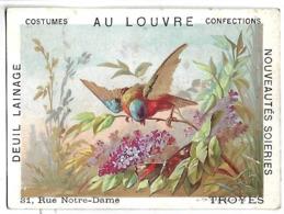 CHROMO - AU LOUVRE - TROYES - OISEAU - Chromos