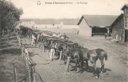 72 Camp D' Auvours Le Pansage Cpa Carte Militaire Chevaux Cheval Ecuries Champagné - Autres Communes