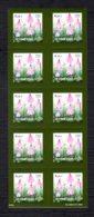 FINLANDE 2004 - Yvert N° 1658 - Facit 1680 - Neuf ** / MNH - FEUILLET 10 Valeurs - Flore, Baies, La Fraise Des Bois - Markenheftchen