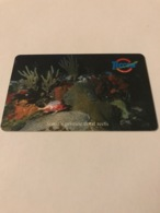 St Eustatius - Chip Card Underwater Scene - Antillas (Nerlandesas)