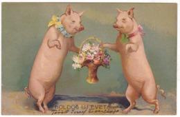 #10774 New Year Greetings UPU Embossed Postcard Mailed 1904: Pigs, Flowers - Nieuwjaar