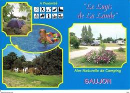 17 . Charente Maritime : Saujon : Le Logis De La Lande . - Saujon