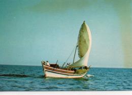 Djibouti Animée Boutre En Mer Bateau - Djibouti