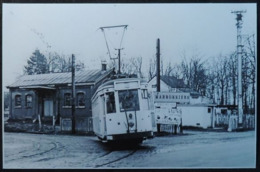 Mariemont Les Marronniers Avec Tram (Morlanwelz) (Reproduction - Photo) - Morlanwelz