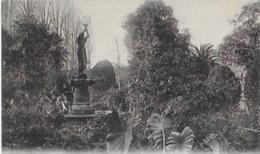 CPA De MILIANA - Jardin Agenta - Algerije