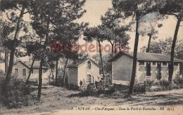 17 - ROYAN - Dans La Forêt Pontaillac - 2 Scans - Royan