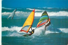 Planche A Voile    AW 582 - Voile
