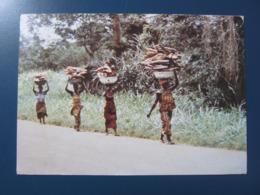 CPA TOGO Porteuses De Bois - Togo