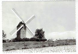 ST ELOOIS-WINKEL - Ledegem - Lindemolen 1720 - Drukkerij Herman - Ledegem