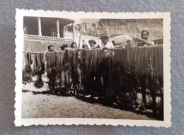 PORTUGAL - ALGARVE - ALBUFEIRA - PRAIA DE OLHOS DE ÁGUA - PESCA - REAL PHOTO 1950's - Places