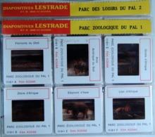 LE PAL  1/2    : 12 DIAPOSITIVES LESTRADE SUR FILM KODAK - Diapositives (slides)