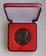 Poland Pologne Medal Medaille Marshal Maréchal Jozef Pilsudski 2 - Tokens & Medals