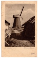 Latvia Lettland WINDMILL K. Viburs Photo 1920s - Moulins à Vent