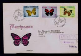 Tropical Butterflies Tropicales Papillons CUBA 1965 Faune Insectes Animals Gc4448 - Papillons