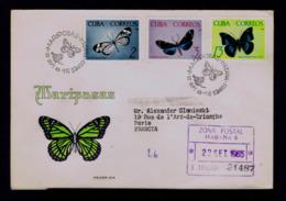 Tropical Butterflies Tropicales Papillons CUBA 1965 Faune Insectes Animals Gc4449 - Papillons