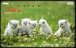 CATS - JAPAN - NTT -  TELEPHONE CARD - FIVE KITTENS IN A FIELD - USED - Gatti