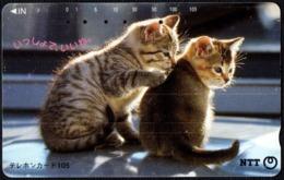 CATS - JAPAN - NTT TELEPHONE CARD - TWO KITTENS - USED - Gatti