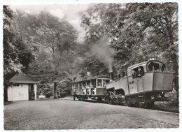 Königswinter Siebengebirge Crémaillière Zahnradbahn Bergbahn Tram Petersbergbahn Dampfbahn Eisenbahn Train 1950er - Koenigswinter