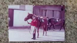 PHOTO CHEVAL CHEVAUX CAVALIERE  ECURIE  1983 FORMAT 9 PAR 13.5 CM - Photographs