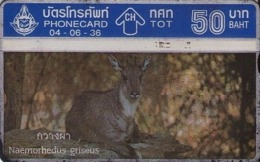 TAILANDIA. FAUNA. Wildlife 2/4. NAEMORHEDUS GRISEUS. 06/1993. T 051. (085) - Tarjetas Telefónicas