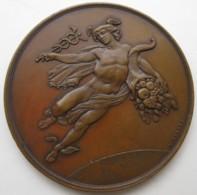 Médaille Exposition De L'Isle 1876 à DECIS Offert Par A. FRANQUEBALME   Par L. MERLEY - Otros