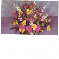 18 CP COLLECTION   BISCOTTES  PELLETIER - Cartoline