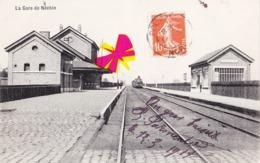 La Gare De NECHIN (avec Arrivée De La Locomotive à Vapeur) - Estaimpuis