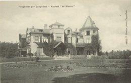 """Hoogboom - Kasteel """"de Sterre"""" - H 4655 - 1907 - Kapellen"""
