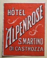 9236 - Etiquette Hôtel Alpenrose S,Martino Di Castrozza - Vieux Papiers