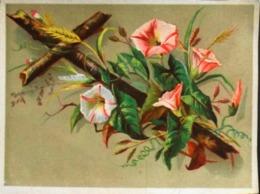 Chromo & Image > CROIX FLEURIE DE PETUNIA VIVACES - TBE - Images Religieuses