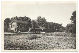 Wolfheze Station Gare Electric Train Trein Spoorweg Railway Eisenbahn 1960's - Niederlande