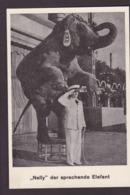 CPA Cirque éléphant Dompteur Circus Cirk Non Circulé Nelly - Circus