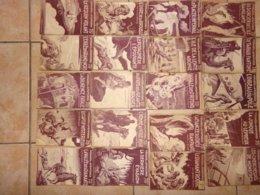 Gros Lot 20 Collection Voyage Et Aventures 227 230 233 209 207 224 226 211 210 217 214 203 200 221 (6 Num=??)   Ferenczi - Aventure