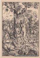 Ansichtskarte  Der Sündenfall - Lukas Cranach  - Malerei & Gemälde
