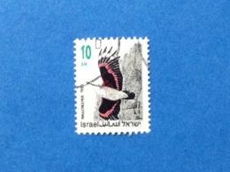 1992 ISRAELE ISRAEL UCCELLO BIRDS OISEAU 10 FRANCOBOLLO USATO STAMP USED - Usati (senza Tab)