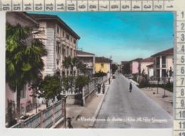 CASTELFRANCO DI SOTTO PISA VIA DE GASPERI  VG - Pisa
