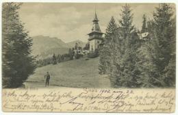 Sinaia. Castelul Peles. - Rumänien