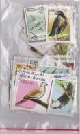 Lot Varié De + De 230 Timbres Du Monde Différents Thème OISEAUX - BIRDS - PAJAROS - VÖGELS - Vrac (max 999 Timbres)